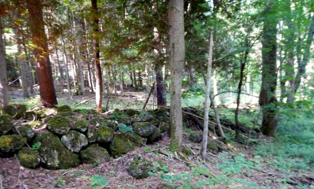 Stone fence 2