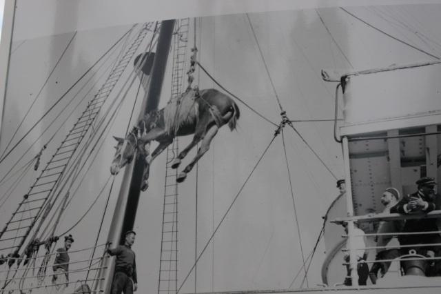 WW1 horse loading