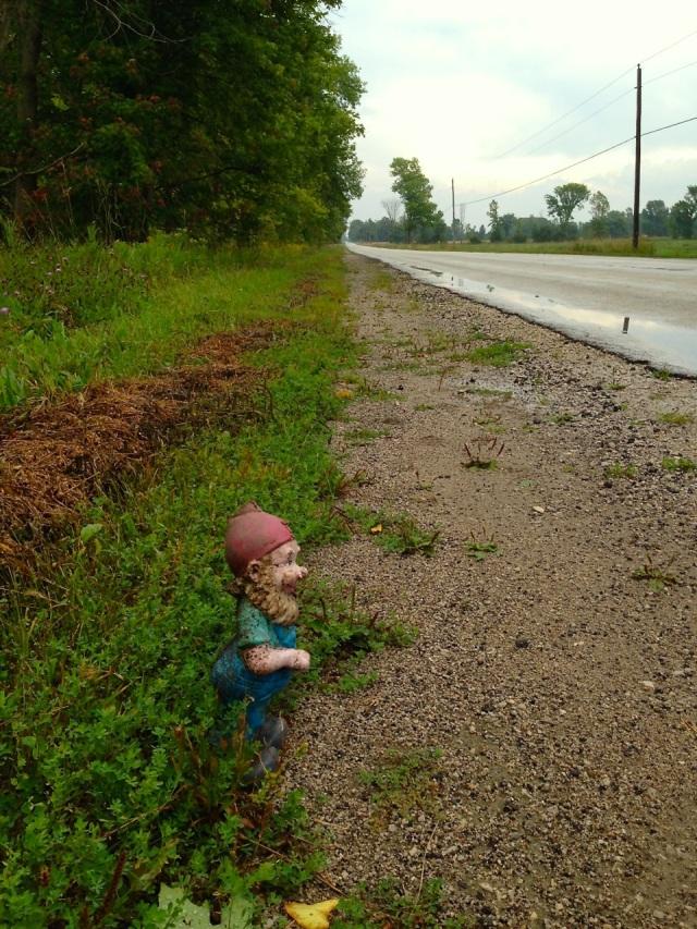 Roadside gnome