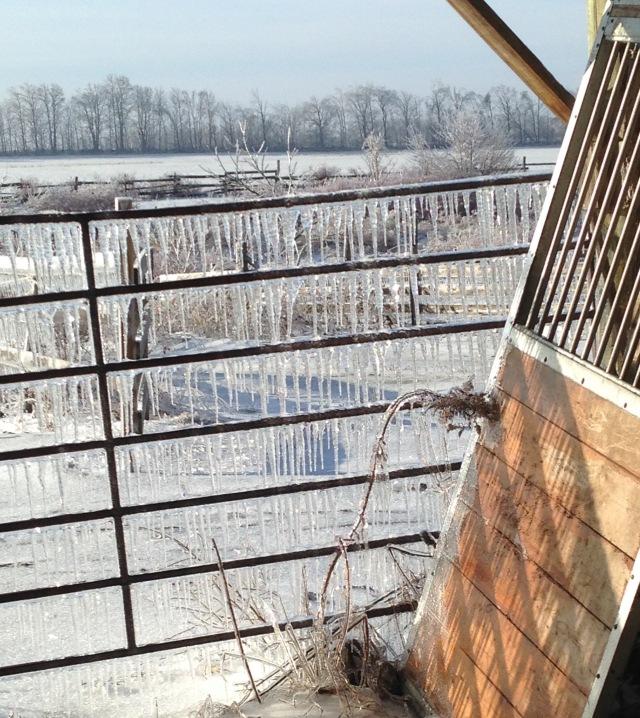 door and ice