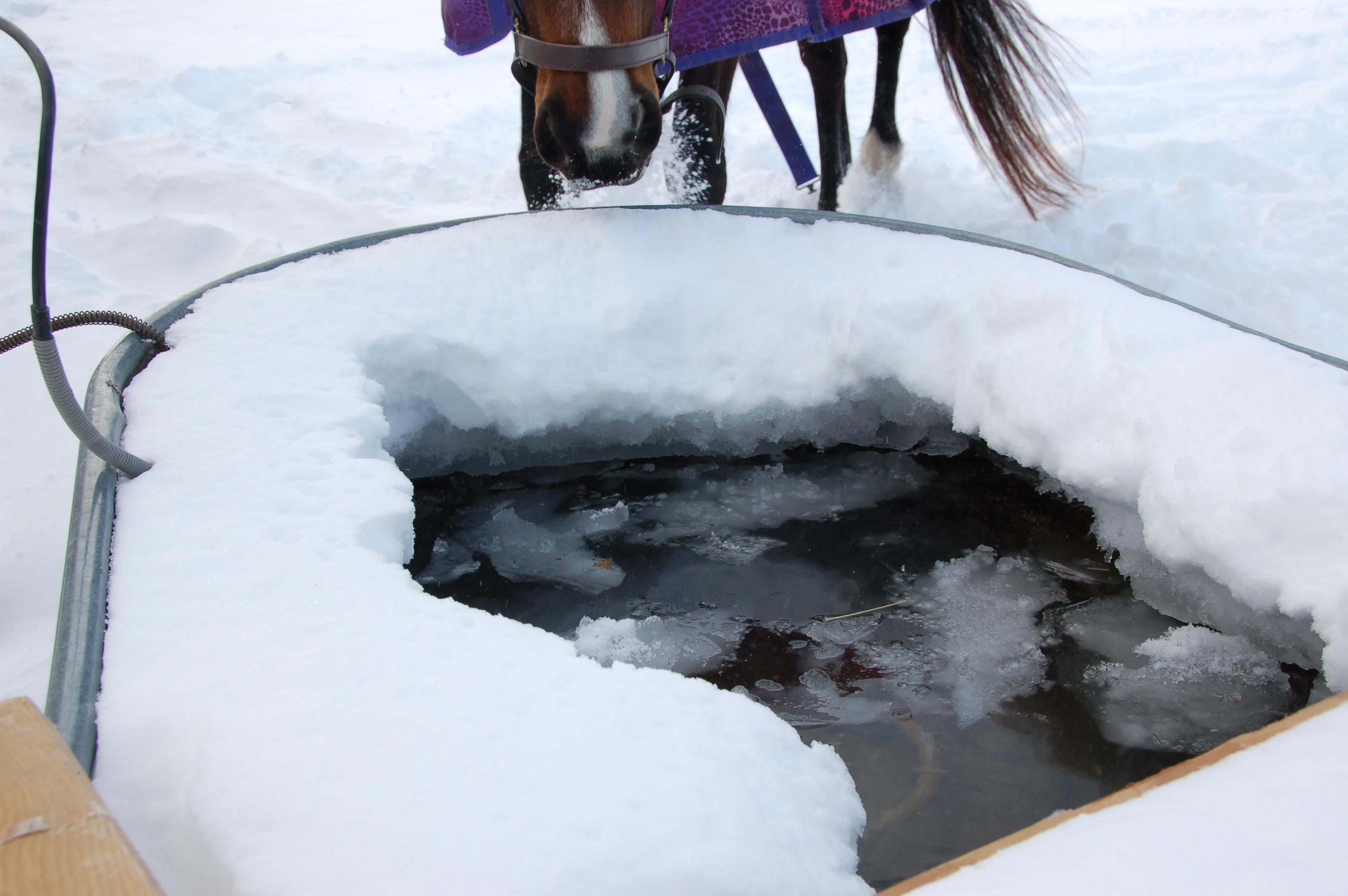Frozen trough