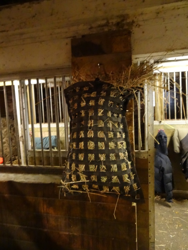 Romy's hay bag