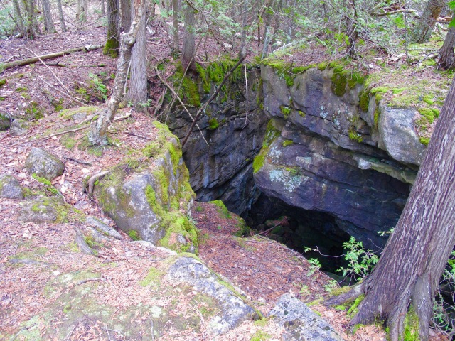 Another bear cave